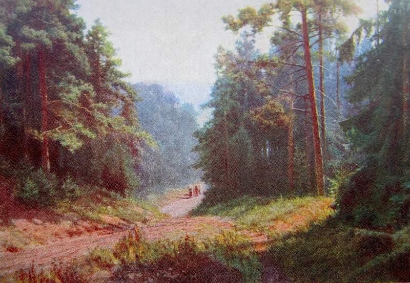 КОНДРАТ ЕВДОКИМОВИЧ МАКСИМОВ Сосновый лес.Спуск к Каме